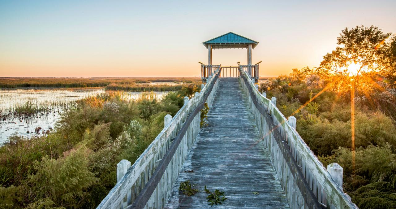 Flyway Trail Boardwalk